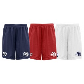Birmingham Lions - Embroidered Mesh Shorts