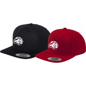Birmingham Lions - Embroidered Snapback