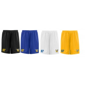 Limerick Vikings - Customised Embroidered Mesh Shorts
