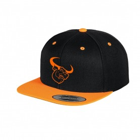 Lincolnshire Longhorns - Two Tone Embroidered Snapback