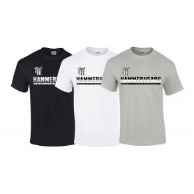 Swansea Hammerheads - Split Text Logo T Shirt