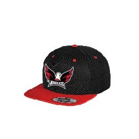 Eagles de L'Aigle - Embroidered Logo 2 Tone Snapback