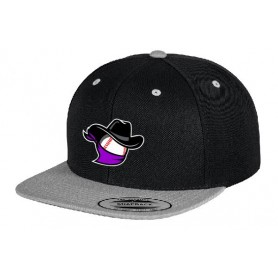 Birmingham Baseball - Two Tone Embroidered Snapback