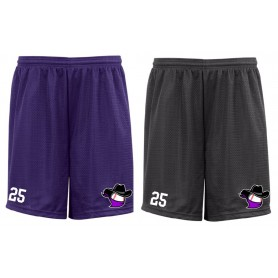Birmingham Baseball - Youth Embroidered Mesh Shorts