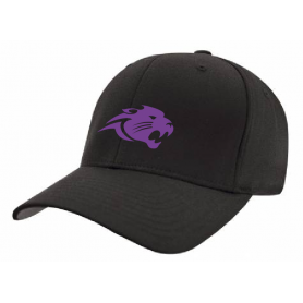 Brighton Panthers - Embroidered Flex Fit Cap