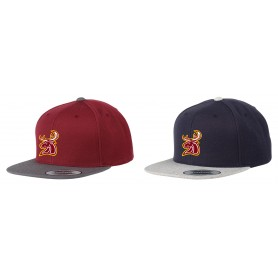 Southampton Stags - Embroidered Two Tone Snapback