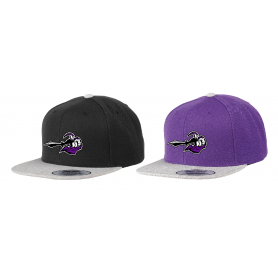Berlin Knights - Embroidered Two-Tone Snapback