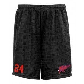HACL Raptors - Custom Embroidered Mesh Shorts