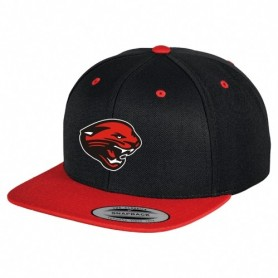Cambridge Cats - Two Tone Embroidered Snapback Cap