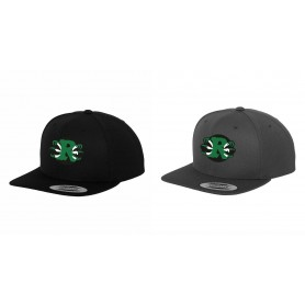 Jurassic Coast Raptors - Embroidered Snapback Cap