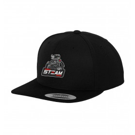 Darlington Steam - Embroidered Snapback