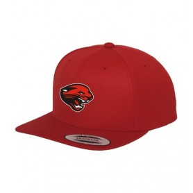 Cambridge Cats - Embroidered Snapback Cap